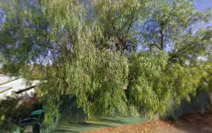 75 Williams Lane, Broken Hill NSW
