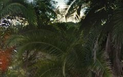2 Royal Palm Drive, Buderim QLD