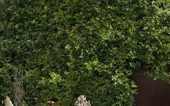 1/10 Beaconsfield Street, Highgate Hill QLD