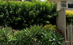 50 Baroda Street, Coopers Plains QLD