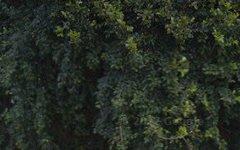 70 Woodlark Crescent, Parkinson QLD