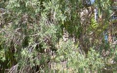 7/179 Clothiers Creek Road, Nunderi NSW
