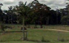 559 Pembrooke Road, Mortons Creek NSW