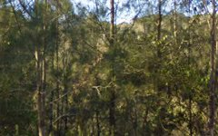 1440 The Lakes Way, Bungwahl NSW