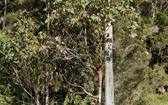 TBA Italia Road, East Seaham NSW