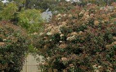 30 Meredith Avenue, Lemon Tree Passage NSW