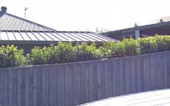 3 Brushwood Close, Gillieston Heights NSW