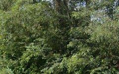 651 Wisemans Ferry Road, Mangrove Mountain NSW