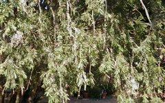 28 Corinne Street, Acacia Gardens NSW