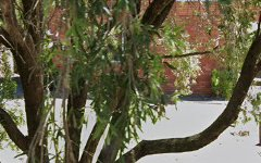 6/17 Lachlan Avenue, Macquarie Park NSW