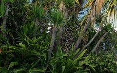 52 Cambridge Avenue, Vaucluse NSW