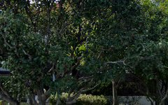 18 Duke Avenue, Rodd Point NSW