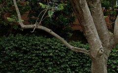 2/19 Palmerston Avenue, Bronte NSW