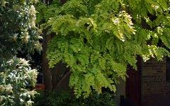 2 Philpott St, Enmore NSW