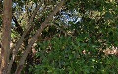 115 Wolseley Street, Bexley NSW
