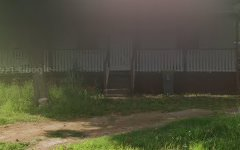 193 Menangle Road, Menangle NSW