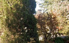 4 Bedford Place, Burradoo NSW