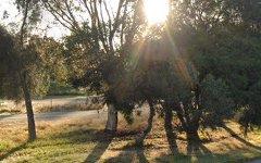 324 Walshs Lane, Matong NSW