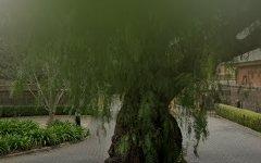 2/3 Trinity Street, College Park SA