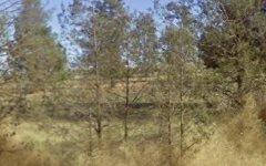 469 Brushwood Road, Currawarna NSW