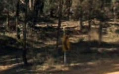 8 Brightside Road, Durran Durra NSW