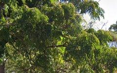 84 RIDGE STREET, Catalina NSW