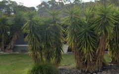 20 Darrambal Drive, Lavington NSW