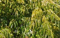 54 Egret Way, Thurgoona NSW