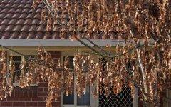 5/205 Andrews Street, East Albury NSW