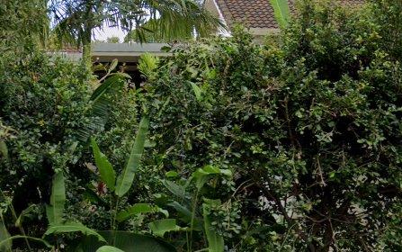 13 Shelley Drive, Byron Bay NSW 2481