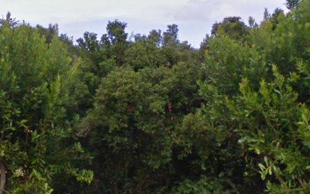 3 Bahama Av, Alstonville NSW 2477