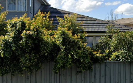 11/5 Stonebridge Dr, Cessnock NSW 2325