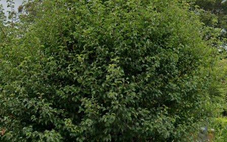 11 Pildra Av, St Ives NSW 2075