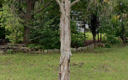 12 Koombalah Avenue, Turramurra NSW 2074