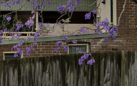 29 Clanwilliam St, Eastwood NSW 2122