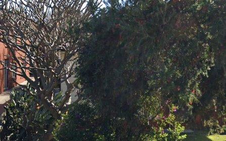 267 Auburn Rd, Auburn NSW 2144