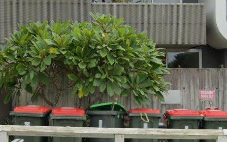 11/36 Fletcher St, Bondi NSW 2026