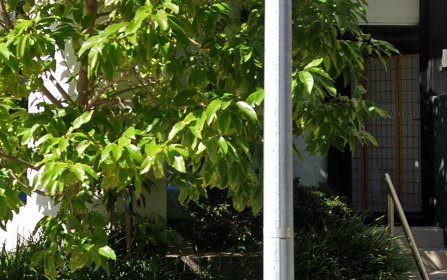 D503/72 MacDonald Street, Erskineville NSW