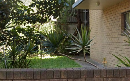 8/289 Arden St, Coogee NSW 2034