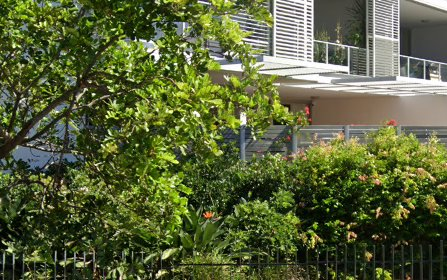 25/2 Gubbuteh Rd, Little Bay NSW 2036