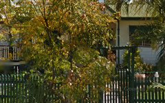 81 Tamworth Drive, Helensvale QLD
