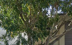 27 Coogeen Street, Bundall QLD