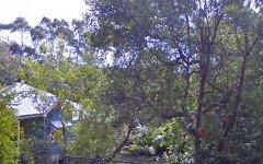 53 Bilambil Road, Bilambil NSW
