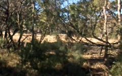 256 Rivertree Road, Liston NSW
