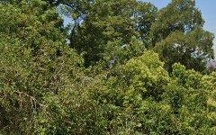 3 Glenridding Road, Glenridding NSW