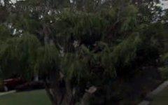 5 Wynne Crescent, Corlette NSW