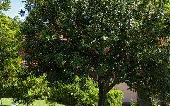 21 Challis Avenue, Turramurra NSW