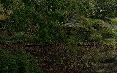 30 Albert Drive, Killara NSW