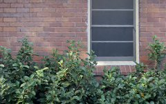 210 Barker Street, Randwick NSW
