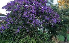 61 Derna Road, Holsworthy NSW